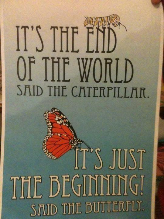 "Facebook shared graphic ""It's the end of the world, said the caterpillar.  It's just beginning!, said the butterfly"""